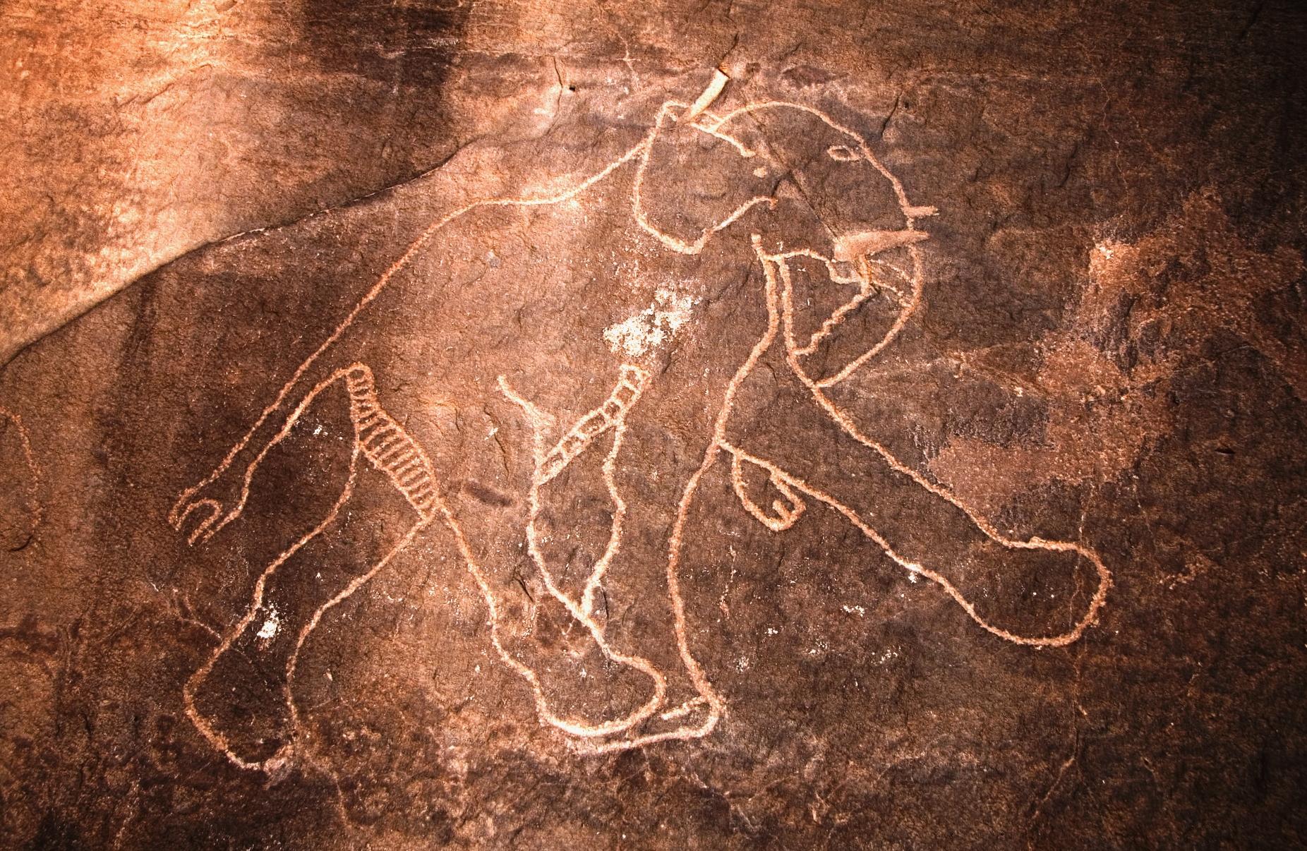 Figurazione rupestre sahariana rappresentante un elefante nella regione libica del Tadrart Acacus .